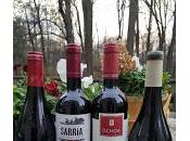 From Vitis Sylvestris Tempranillo Garnacha Spain's Vinos D.O. Navarra