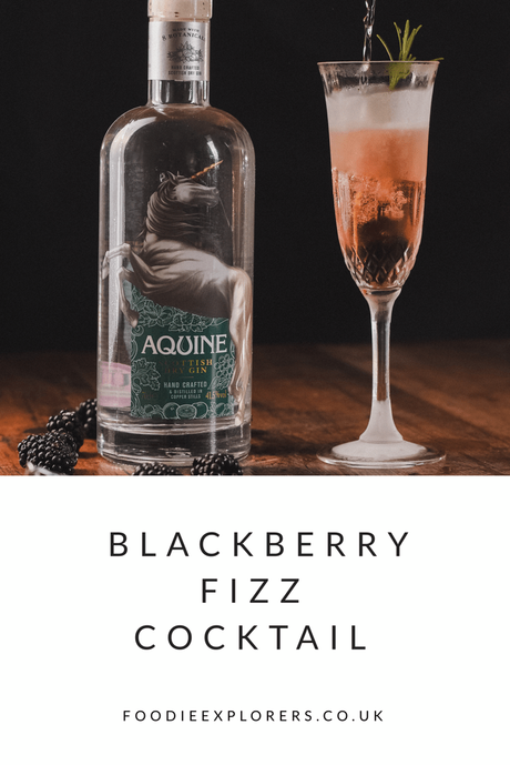 Recipe: Blackberry Fizz Cocktail