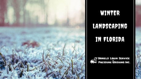 Winter Landscaping Tips for Florida