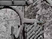 Snow Came