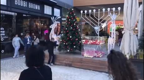 Christmas trees on display in Israel