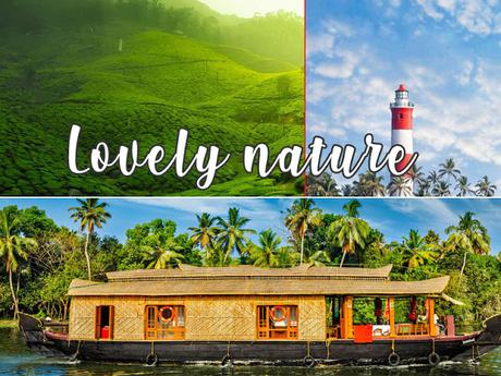 Tourist Places to Visit in Munnar On A Honeymoon