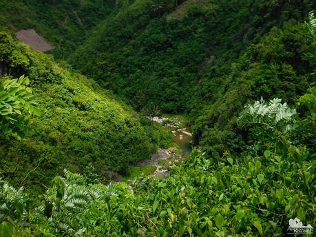 Danao River