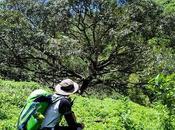 Cebu Highlands Trail Segment Ginatilan Lawaan, Danao