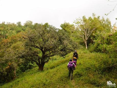 Mangapares Trail