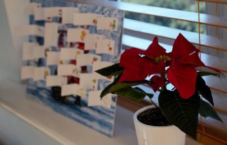 Christmas in Photos