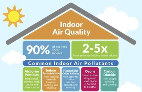 How can I purify air in my home naturally?