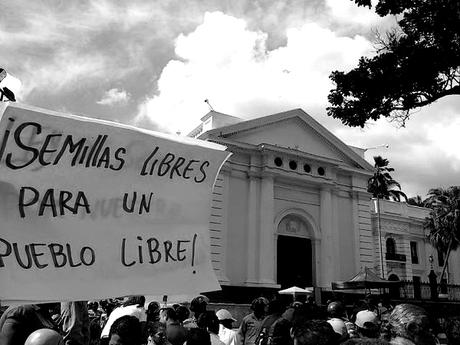 """A sign calling for the passing of the 2015 Seed Law reads """"Free seeds for a free people."""" (Alba TV)"""