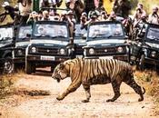 Corbett National Park Major Attraction Wildlife Holidays India