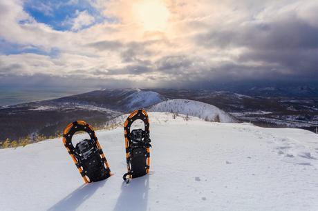 Snowshoes FAQs