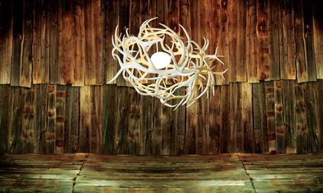 Antlers as Artistic Lighting