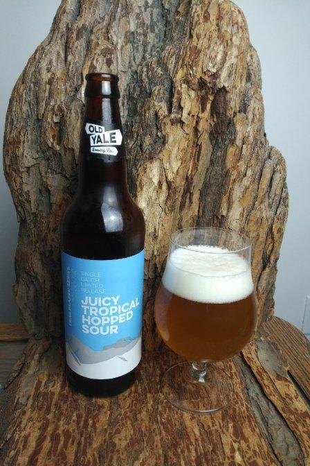 Juicy Tropical Hopped Sour – Old Yale Brewing