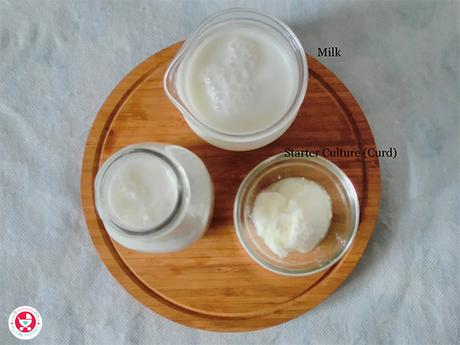 How to make Homemade Curd?