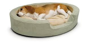 Getting the Best Dog Beds