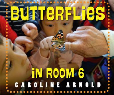 Booklist Advance Review of BUTTERFLIES IN ROOM 6