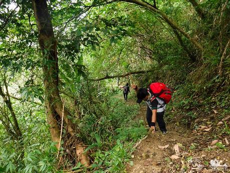 Slippery downhill trail