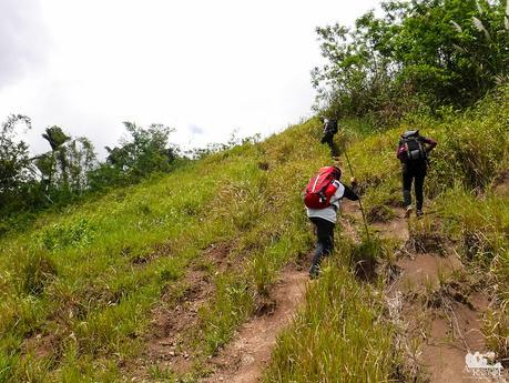 Ascending Mt. Mago