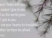 Peace War,