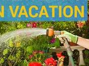 Ways Water Plants While Vacation