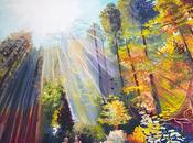 Friday Rainbow Forest