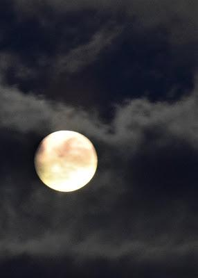 On the Night of the Super Wolf Blood Moon Eclipse