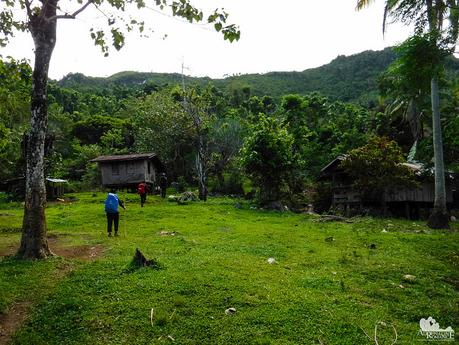 A household in the middle of a jungle