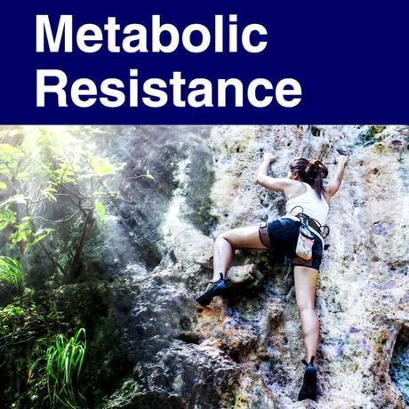 Metabolic Syndrome vs Slow Metabolism