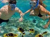Tampa Florida's Gulf Coast- Activities