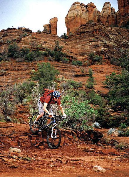 Buy Stuff From Planet Gear, Help The International Mountain Biking Association