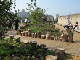 rooftop garden of the Queen Elizabeth Hall