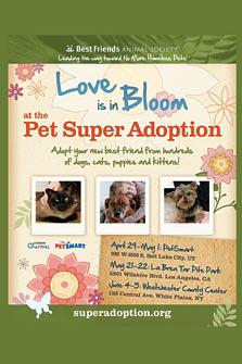 Kristin Bauer to attend Los Angeles Pet Super Adoption