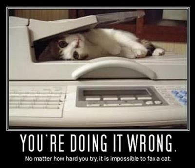 Do You Have a Photocopier? I Don't Know, Do You?