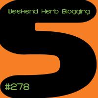 Spelt-Buckwheat and carrot muffins - WHB #278