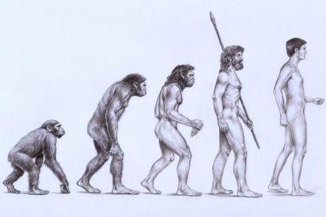 Evolution of man essay