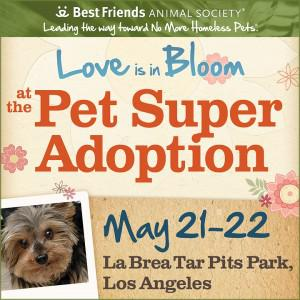 Los Angeles Super Pet Adoption