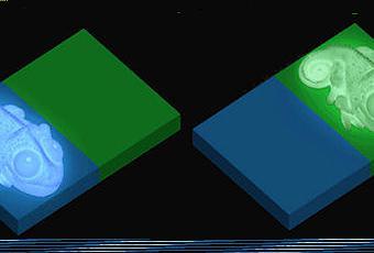 Huey The Color Copying Chameleon Lamp - Paperblog