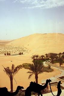 A taste of the desert