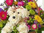 Flower Bouquet Shaped Like