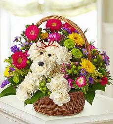 Flower Bouquet Shaped Like a Dog