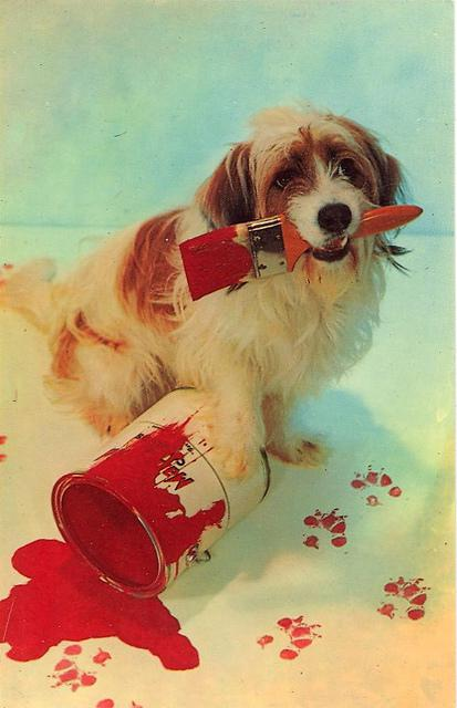 vintage Dog postcard Stocklist