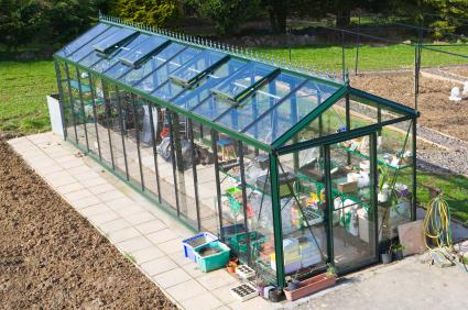 Professional Hobby Greenhouse