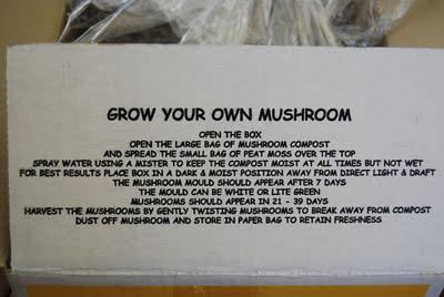Finding room for mushrooms