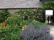 Upwaltham Barns, Sussex National Garden Scheme