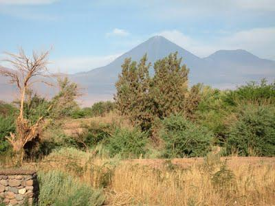 Chile's Atacama Desert:  Part I