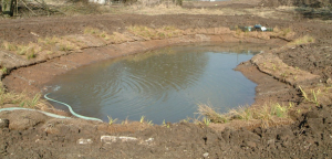 Habitat creation for Great Crested Newts