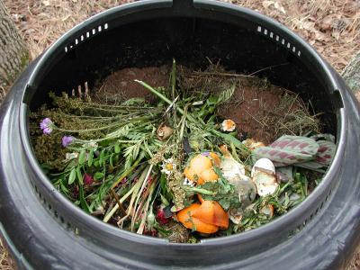Composting For Dummies (Pt 1)