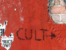Let's Start Cult!