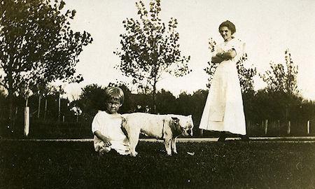 Pit Bulls - The Nanny Dogs