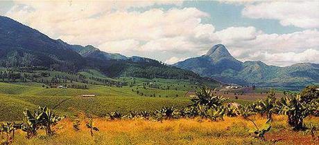Equatoria Update: Mozambique Crossing Finished!