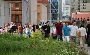 High Line Public Park
